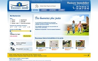 Thoissey Immobilier